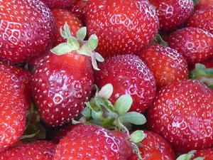 subject12_strawberry_6