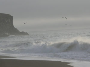 subject18_beaches_pretty5
