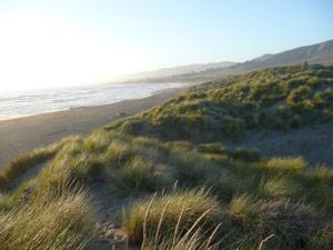subject18_beaches_Salmon3