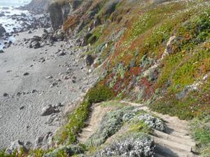 subject18_beaches_stairs1