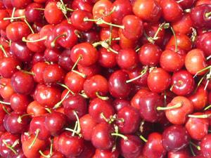 subject18_cherries_1
