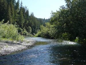 Y2sub32_River10